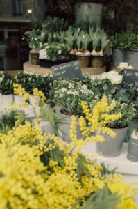 Public Relations Support For Florists