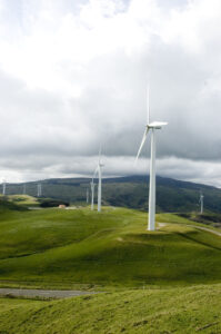 Advertising For Companies In The Renewable Energy Industry